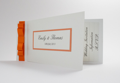 Wedding Invitation Sample of Cheque Book Collection